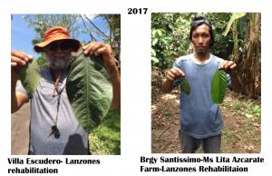 2017 Big leaves Villa &Azcarate